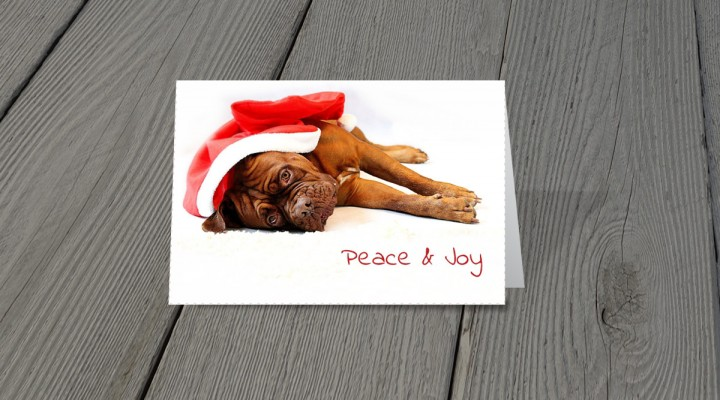 Christmas Greeting-Card-CP-18